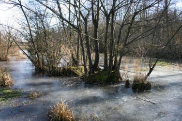 Križevsko jezero na Goričkem