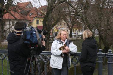 Intervju z Marjano Hönigsfeld Adamič.