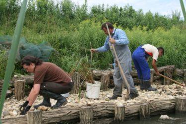 ERM smo zgradili na iztoku Ledavskega jezera, z visoko stopnjo evtrofikacije.