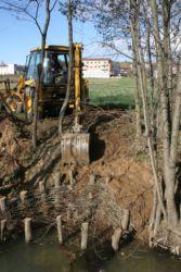 Vrbovi popleti preprečujejo erozijo rečnih brežin in so hkrati pomemben življenjski prostor za vodne in obvodne živali (Gornji Petrovci).