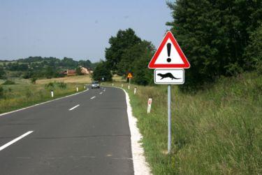 Prometni znaki opozarjajo voznike na večjo previdnost pri nočni vožnji v izogib povozu vidre.