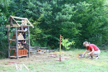 Projekt Aqualutra: hotel za žuželke, ki je podlegel zaradi podiranja bolnega drevesa v gozdu.